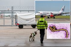 Ebola terror at Gatwick as passenger collapses and dies getting off Sierra Leone flight - Mirror Online