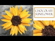 How to Make a Chocolate flower | Sunflower Style - YouTube