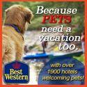 Santa Cruz, California Pet-Friendly Hotels, Dog-Friendly Restaurants, Dog Parks and Travel Guide