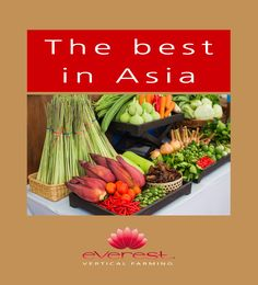 The best in Asia  EVEREST - Vertical Farming