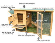 Wat is een goed kippenhok? Tips waarmee je rekening dient te houden voor het juiste kippenhok. Zo kies je voor een diervriendelijke kippenren.