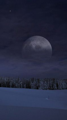 Moon - Black Forest, Germany...It almost doesn't look real.