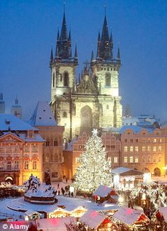 Czech Republic Christmas Market, Prague
