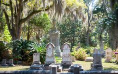 Southern Gothic–style tombstones framed by ferns, flowers, dwarf palmettos, and long moss trees make Bonaventure one of Savannah's most hauntingly beautiful sights. It was featured on the cover of the best-selling novel Midnight in the Garden of Good and Evil and was once a plantation. With 100 acres to explore, why not be strategic and join one of the free Bonaventure Historical Society weekend walking tours—or pick up a guidebook at the visitor's center. For something spookier, turn up at…