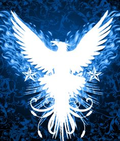 I am a Phoenix rising from the ashes...blue flaming glory for all to see. Come rise with me! www.iamugli.com