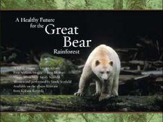 Save the Great Bear Rainforest..