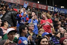 Toronto Rock, Lacrosse, Fan, Baseball Cards, Sports, Hs Sports, Hand Fan, Sport, Fans