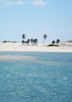 """The cure for anything is salt water: sweat, tears, or the sea"" -Aguas Belas Beach, Cascavel, Brazil"