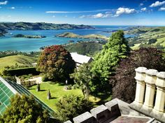 """See 15 photos and 3 tips from 97 visitors to Larnach Castle Lodge Dunedin. """"What an amazing place! A must do if you're in the neighbourhood! New Zealand, The Good Place, Golf Courses, The Neighbourhood, Castle, Vacation, Places, The Neighborhood, Vacations"""