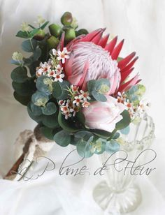 Protea wedding bouquet King protea, pink ice protea, Geraldton wax, gumnuts and Australian native foliage Rustic, native wedding flowers is part of Protea wedding - LaPlumeDeFleur Flor Protea, Protea Flower, Protea Wedding, Flower Bouquet Wedding, Bouquet Flowers, Wax Flowers, Bridal Flowers, Blue Flowers, Wedding Bouquets