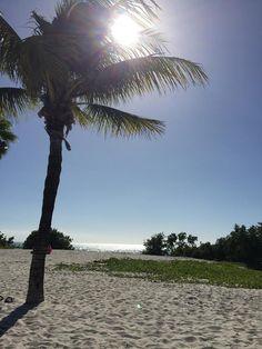 Sombrero Beach, Marathon Key, FL- nice public beach