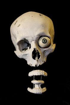 Skull Reference, Photo Reference, Halloween Mural, Airbrush Skull, Simpsons Drawings, Skeleton Anatomy, Rendering Art, Anatomy Poses, Skull Painting