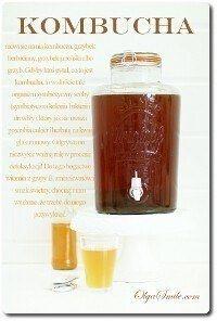 Grzyb herbaciany KOMBUCHA
