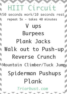 26 best ab circuit workouts images  abdominal muscles