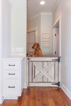 4 Fetching Ways to Make Your Home More Pet-Friendly via @surroundmag