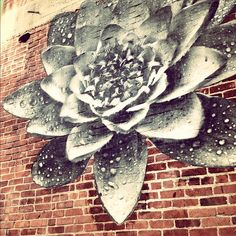street art flower on brick wall.  Lovingly shared with YOU by The Agrarian Artist.