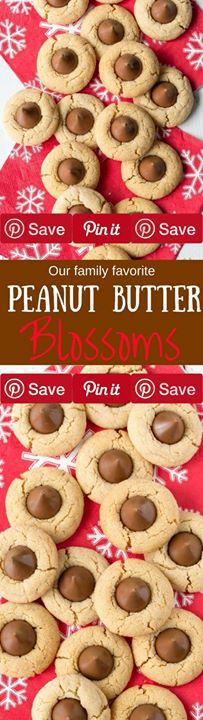 Peanut Butter Blossoms 42 mins to make makes 56 cookies Ingredients Refrigerated 1 Egg Condiments  cup Peanut butter Baking & Spices 1  cups All-purpose flour unbleached  tsp Baking powder 1 cup Brown sugar firmly packed light 1/3 cup Granulated sugar 1 package Milk chocolate kisses  tsp Salt 1/3 cup Solid shortening  tsp Vanilla Dairy 5 tbsp Butter unsalted