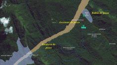 MadalBo: Plantean piscina y elevador para peces en presa Ch...