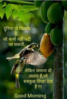 Hindi Good Morning Quotes, Good Morning Messages, Good Morning Images, Motivational Quotes In Hindi, Hindi Quotes, Inspirational Quotes, Beautiful Morning, Quotes Motivation, Nice