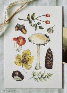 Art Print - Autumn Treasures - Watercolour and ink illustration by Nadia Corfini. #illustration #art #drawing #forest #autumn #naturelove