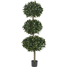 @Overstock - Add a unique decorative touch to your home with this 69-inch high sweet bay silk tree. This sweet bay tree comes with three large sweet bay balls and over 2,600 bay leaves.http://www.overstock.com/Home-Garden/Sweet-Bay-Topiary-69-inch-Triple-Ball-Silk-Tree/5835013/product.html?CID=214117 $195.99