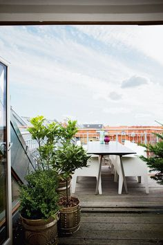 Roof terrace with a simple furnishing and lots of plants.