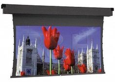Da-Lite HDTV to NTSC Video Format Dual Vision Tensioned Dual Masking Electrol Screen by Da-Lite. $4536.00