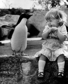 A little girl holds a penguin*s flipper as they walk together around the London Zoo, 1937: