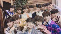 """""""Everyone says , thankyou treasure 13 😭 Treasure Maps, Treasure Boxes, Got7 Jackson, Jackson Wang, Yg Entertainment, Fandom, Yg Trainee, Korean Boy Bands, Cute Panda"""