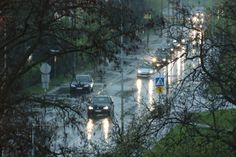 It's raining street.