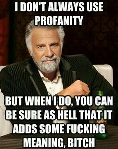 I don't always use profanity, but when I do you can be sure it adds some fucking meaning, bitch. - humor me - random funnies