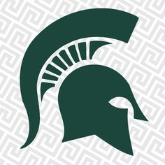MSU Spartans on the rib cage #gogreen