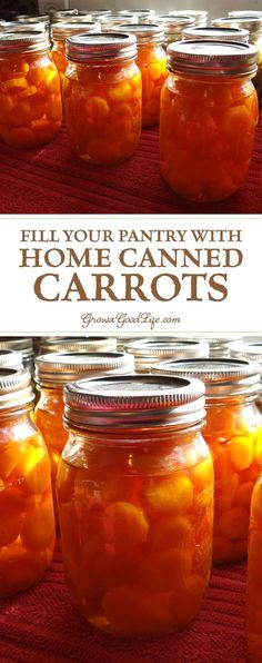 Canning carrots is a great way preserve them when abundant and in season. Jars of carrots in your pantry will come in handy for quick meals, soups, or stews. Take advantage of the seasonal harvests to stock you pantry shelves with home canned carrots. Canning Food Preservation, Preserving Food, Canning Vegetables, Veggies, Canned Carrots, Freezing Carrots, Canning Recipes, Canning Tips, Easy Canning