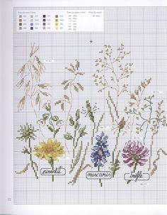 0 point de croix grille et couleurs de fils pissenlit muscaris trèfle, fleurs