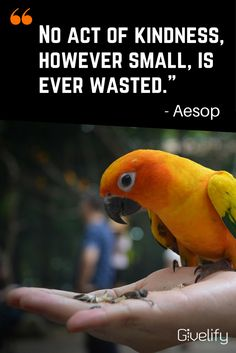 No act of kindness no matter how small .is ever wasted. Say More, Aesop, Non Profit, Favorite Quotes, Quotations, Acting, Spirituality, Inspire, Sayings