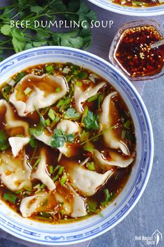 Beef dumplings in hot & sour soup (酸汤水饺) – Red House Spice