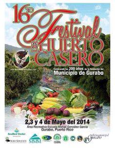 Festival del Huerto Casero 2014 #sondeaquipr #festivaldelhuertocasero #gurabo