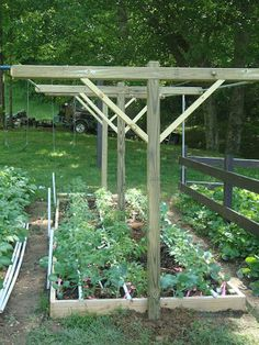 Simple Pleasures: T-Frames on each bed to accommodate whatever plantings might . - Simple Pleasures: T-Frames on each bed to accommodate whatever plantings might need support or tre - Tomato Trellis, Garden Trellis, Garden Frame, Garden Boxes, Tomato Garden, Vegetable Garden Design, Vegetable Gardening, Tomato Support, Outdoor Garden Lighting