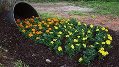 Image result for flower pot dryer sheet