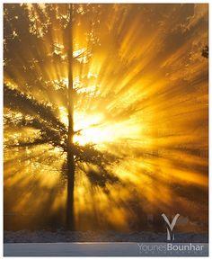 """Sunbeams"" by Younes Bounhar photography"