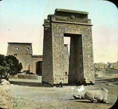 Древний Египет - старинные фото   zhitanska.com