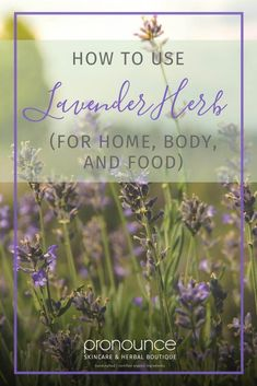 How To Use Lavender Herb (for home, body, and food) • Pronounce Skincare