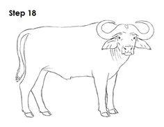 8e777e21245ce African Cape Buffalo 18 Drawing Animals, Animal Drawings, African Buffalo,  African Quilts,