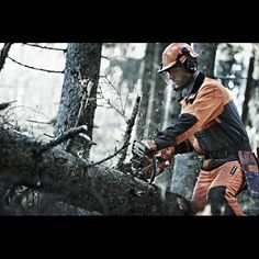 Basic tips on tree limb removal. Husqvarna's rules for safe and efficient limbing using a chainsaw.