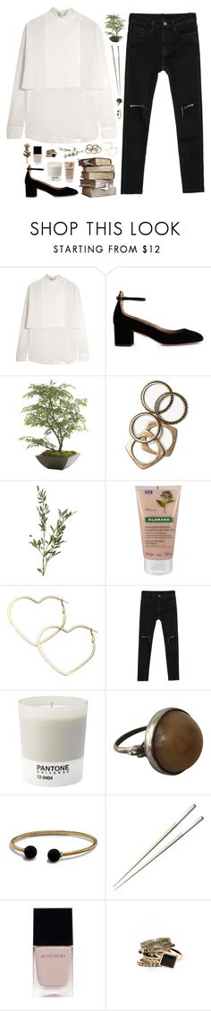 """May the sunrise bring hope where it once was forgotten"" by nandim ❤ liked on Polyvore featuring Valentino, Aquazzura, Ethan Allen, Rachel Leigh, Klorane, Thalia Sodi, Pantone, David Yurman, Christofle and Witchery"