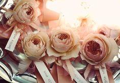 pale peach bridesmaid flowers | Photo by Anne Nunn Photography