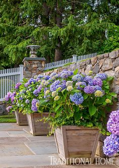 Pots of 'Nikko Blue' hydrangeas soften the tiled floor of the poolside dining nook and bring in a beautiful splash of purple. - Photo: Rob Cardillo