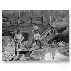 Goldminers Gold Rush Miners ~ California 1850 Famous Vintage Photographs & Photos Striking It Rich! Gold Miners using sluice to find nuggets and gold dust.