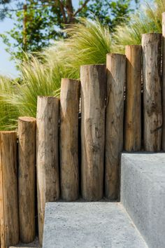 Tropical Garden 47 unique garden fence decoration ideas you will like this page 18 Garden Fencing Uk, Garden Fence Paint, Garden Fence Panels, Garden Paths, Coastal Gardens, Grey Gardens, Wooden Fence, Wooden Garden, Fence Gate Design