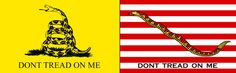 Benjamin Franklin first proposed the rattlesnake as our national symbol because it is indigenous to our country, has 13 rattles mirroring the 13 colonies, and is a formidable opponent.  The Gadsden flag came first and the Navy Jack is the later version that was flown on navy warships.  This idea of voice not being ignored or silenced seemed relevant.  The symbolism of the snake is also significant: used in fertility rites, ideas of rebirth and regeneration, life and death